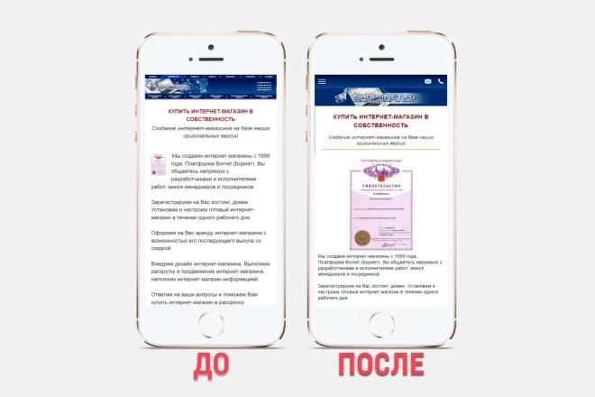 Адаптация сайта под все разрешения экранов и мобильные устройства 8 - kwork.ru