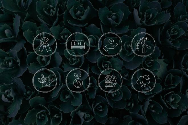 Нарисую 8 иконок 1 - kwork.ru
