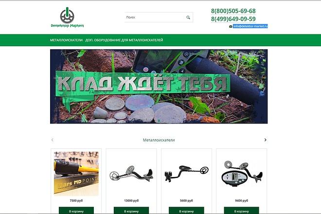 Профессионально создам интернет-магазин на insales + 20 дней бесплатно 41 - kwork.ru