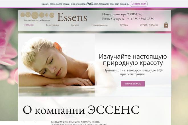 Создание сайтов на конструкторе сайтов WIX, nethouse 44 - kwork.ru