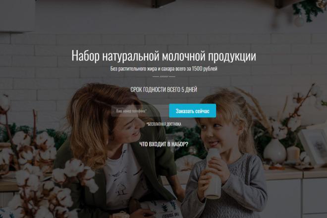 Продающий сайт - Лендинг под ключ, для любых целей 2 - kwork.ru