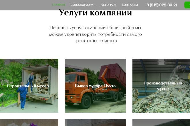 Создание сайта - Landing Page на Тильде 160 - kwork.ru