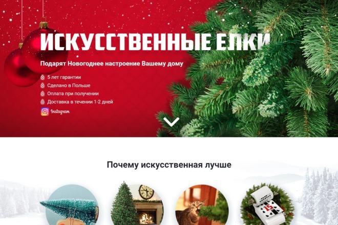 Скопирую любой landing page с правками + установлю админ панель 9 - kwork.ru
