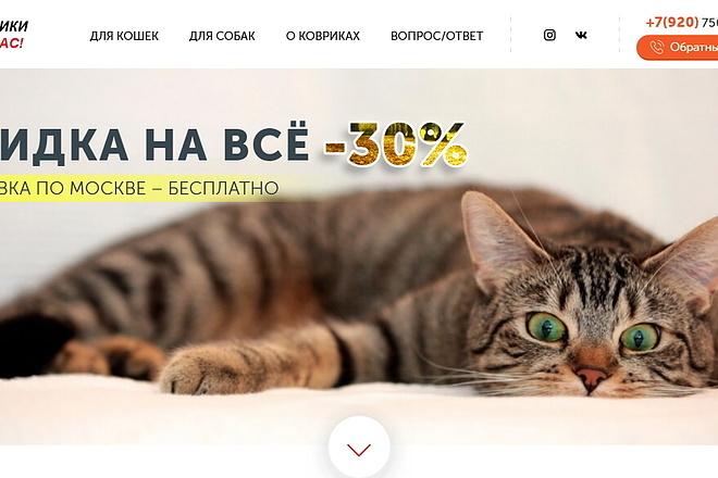 Копия товарного лендинга плюс Мельдоний 45 - kwork.ru