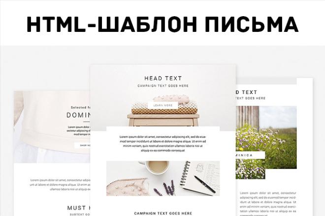Сверстаю адаптивное HTML письмо для рассылки. Сделаю дизайн 2 - kwork.ru