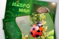 Рекламная листовка, флаер (А4, А5, А6, евро) 14 - kwork.ru