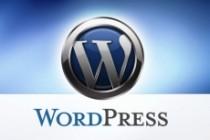 Создание Landing Pages на Wordpress 18 - kwork.ru