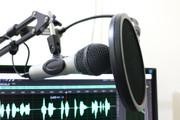 Озвучка аудио- и видеорекламы, для ТВ, ТЦ, радио или метро 4 - kwork.ru