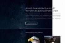 Создание продающих Lаnding Page посадочной страницы для Вашего бизнеса 16 - kwork.ru
