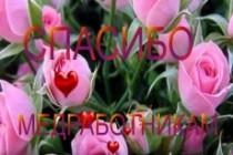Слайд-шоу для поздравлений, памятных подарков, свадеб, дня рождения 3 - kwork.ru
