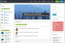 Тема BuddyPress для WordPress на русском с обновлениями 15 - kwork.ru