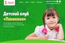 Лендинг на Tilda 37 - kwork.ru