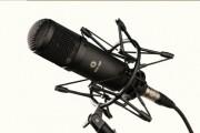 Начитаю текст в микрофон 5 - kwork.ru