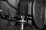 Проф. озвучивание аудиокниг, разных игровых персонажей, проектов 3 - kwork.ru