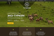 Продающий сайт - Лендинг под ключ, для любых целей 230 - kwork.ru