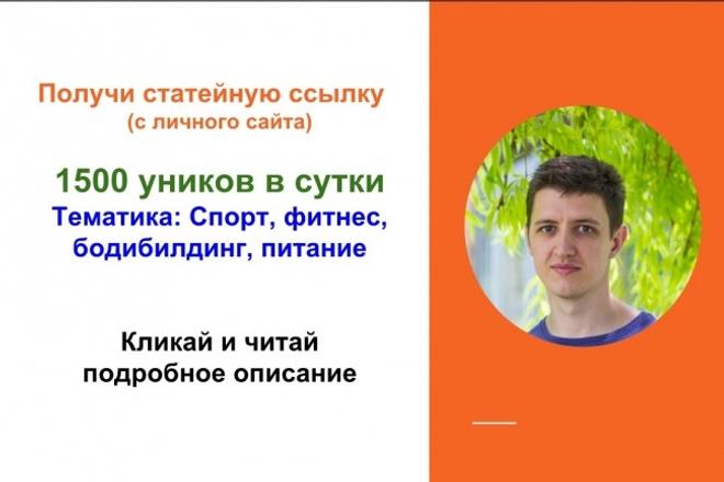 Вечная ссылка с моего посещаемого сайта спортивной фитнес тематики 1 - kwork.ru