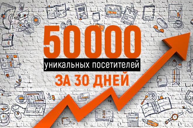 50000 уникальных посетителей в течение месяца 1 - kwork.ru