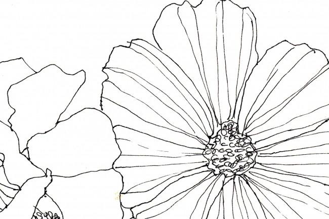 Нарисую рисунок или эскиз в ручной технике красиво и быстро 31 - kwork.ru