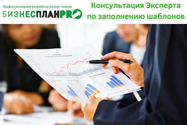 Консультация Эксперта по заполнению Наших шаблонов Бизнес - плана 1 - kwork.ru