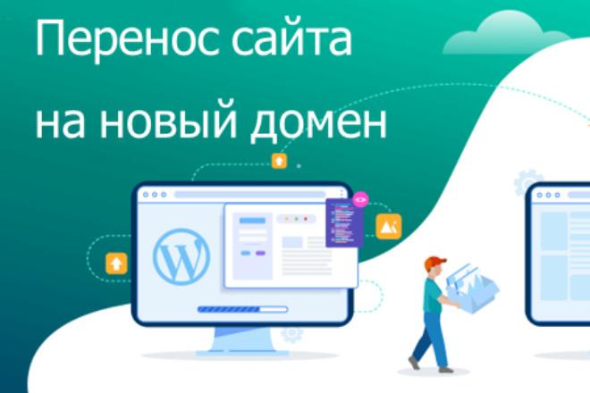 Перенесу сайт с одного домена на другой 1 - kwork.ru
