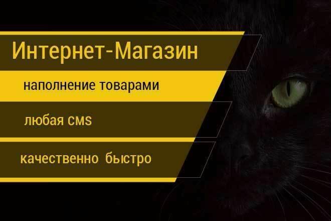 Наполню ваш магазин товарами 1 - kwork.ru
