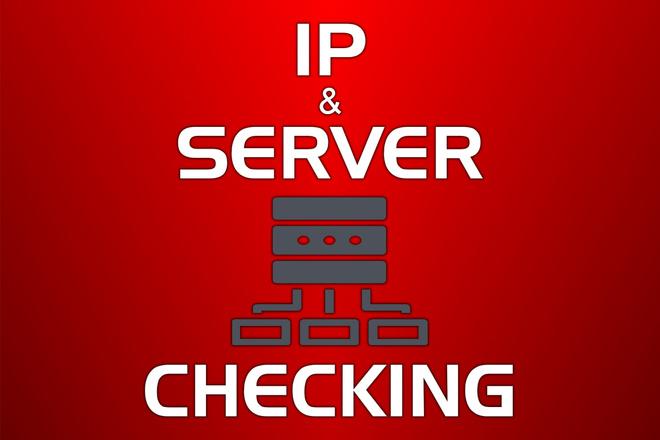 Качественная проверка серверов и IP с полным отчётом и гарантией 1 - kwork.ru