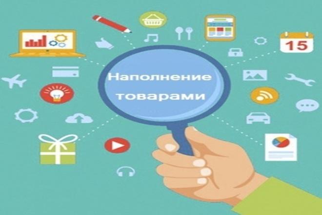 Наполнение сайт товарами 1 - kwork.ru
