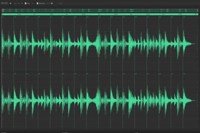 свести картинку со звуком многих корненожек