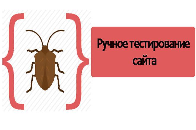 Ручное тестирование сайта 1 - kwork.ru