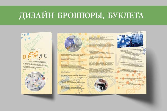 Разработаю макет Брошюры, буклета 7 - kwork.ru