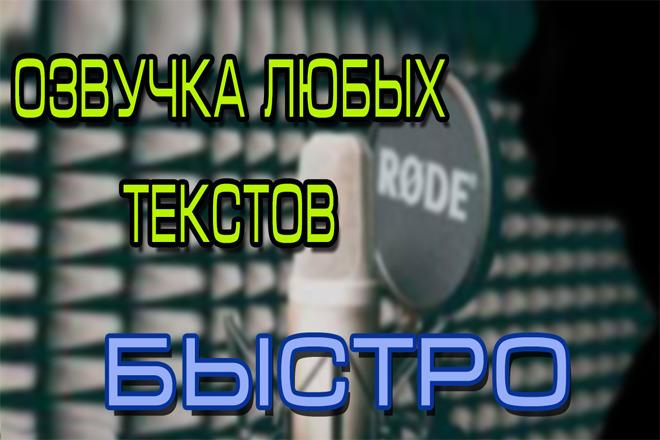 Озвучу ваш текст 1 - kwork.ru