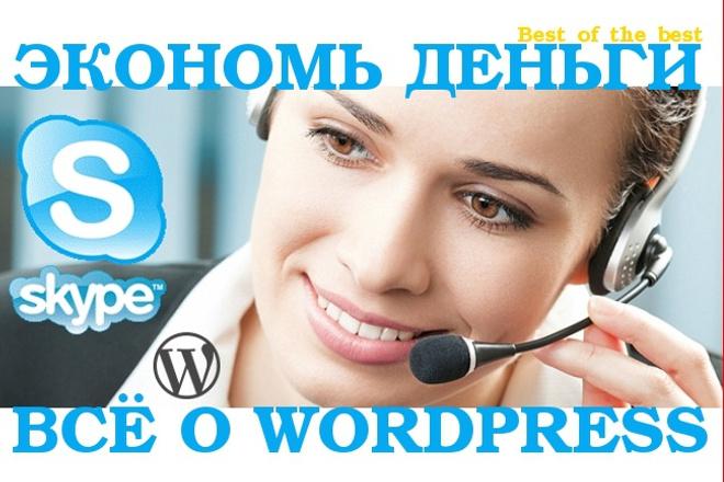 Консультация в Skype по продвижению вашего сайта на Wordpress 1 - kwork.ru