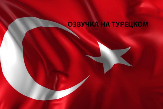 Сделаю озвучку на Турецком 1 - kwork.ru