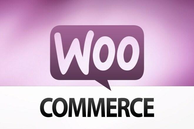 Любой премиум плагин для WordPress с сервиса WooCommerce WooThemes 1 - kwork.ru
