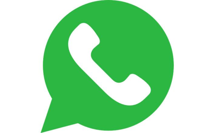Создание чат-ботов в WhatsApp в конструкторе 1 - kwork.ru