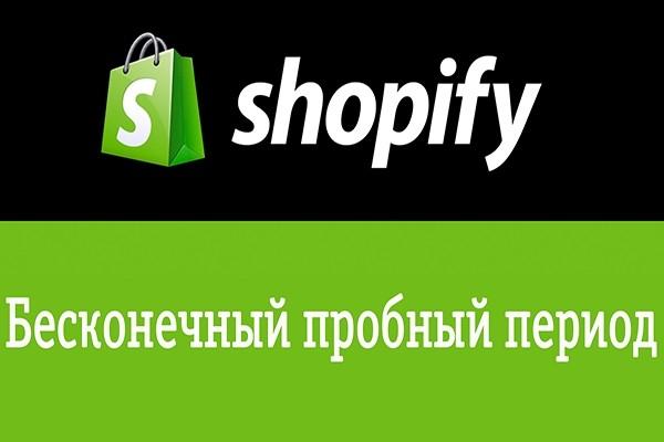 Установлю бесконечный пробный период для Shopify магазина 1 - kwork.ru