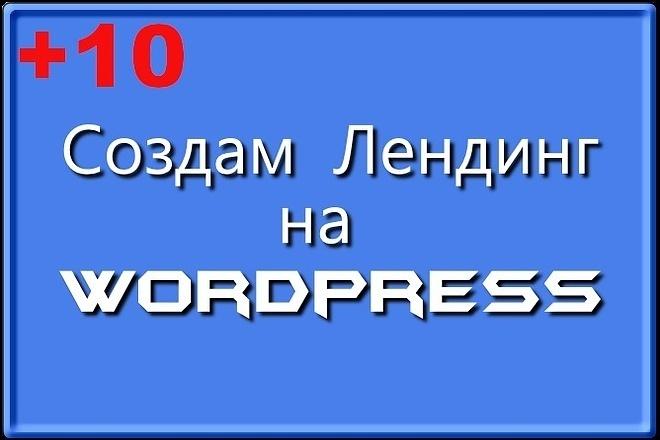 Создам лендинг на вордпресс быстро 38 - kwork.ru