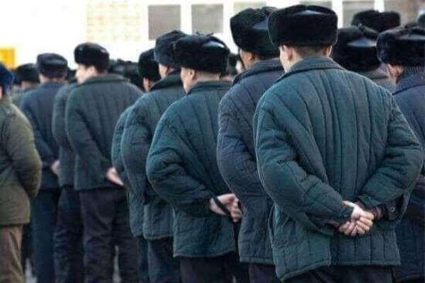 Юридическая помощь осужденным и их родственникам 1 - kwork.ru