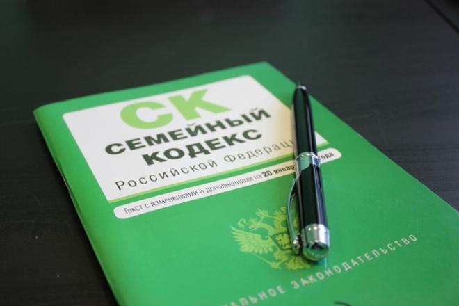 Исковое заявление по взысканию алиментов на содержание ребёнка 1 - kwork.ru