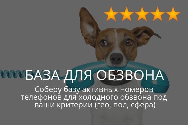 Соберу базу 5000 номеров 1 - kwork.ru