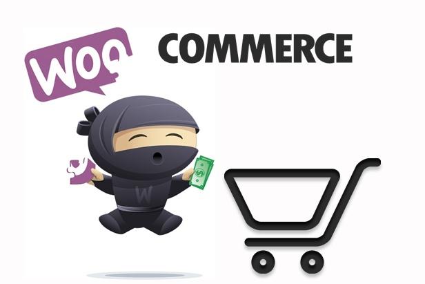 Наполню интернет-магазин WooCommerce товарами 1 - kwork.ru