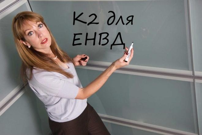 К2 для ЕНВД 1 - kwork.ru