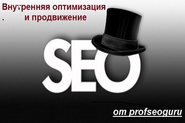 Внутренняя оптимизация сайта и подготовка к продвижению 1 - kwork.ru