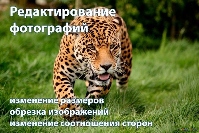 Обработка фотографий в фотошопе 2 - kwork.ru