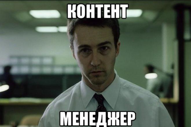 Контент-менеджер (помощник) на ваш сайт 1 - kwork.ru