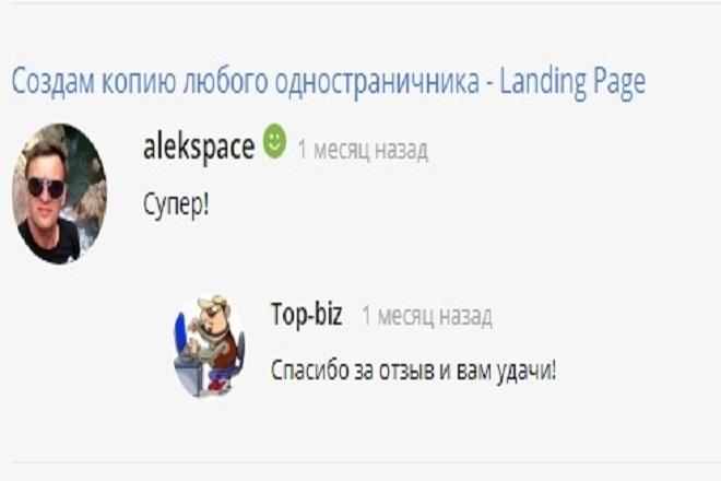 Создам копию любого одностраничника - Landing Page 1 - kwork.ru
