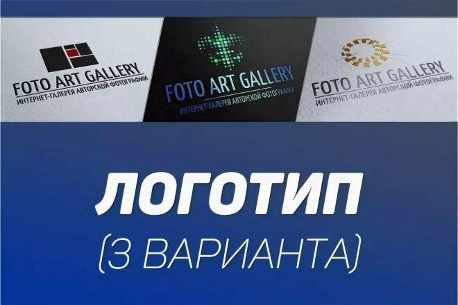 Логотип в 3 вариантах 4 - kwork.ru