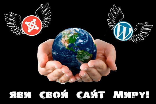 Сделаю сайт на популярном движке WP или Joomla 44 - kwork.ru