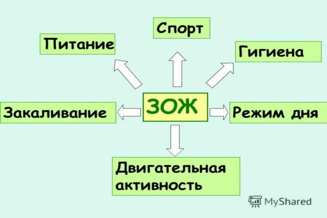 Напишу статью по здоровому образу жизни 1 - kwork.ru