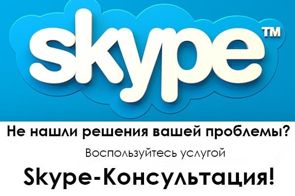 Сео консультация по Skype 1 - kwork.ru
